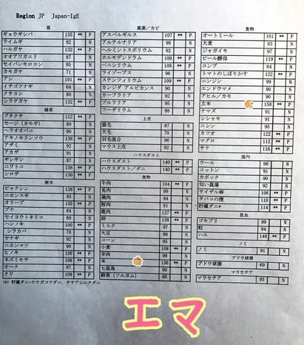 IMG_3472.JPG